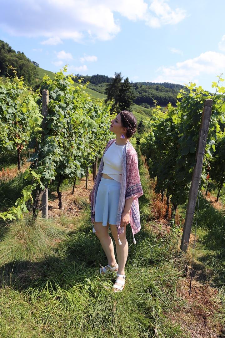 vigne 3