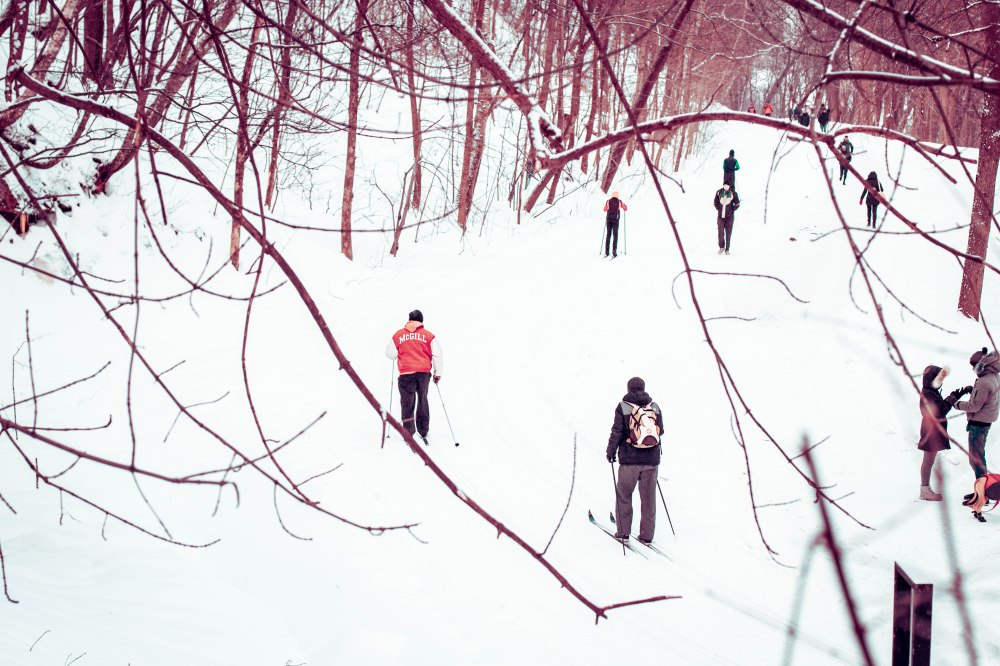 mont royal en hiver